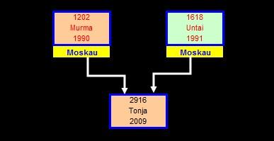 Tonja